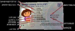תמונת רישיון נהיגה- חלק קדמי